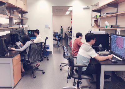 lichtman-lab-4